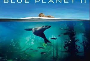 蓝色星球第二季